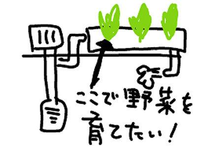 【アクアリウム】外掛けでカイワレって食ったらあかんのじゃないか?